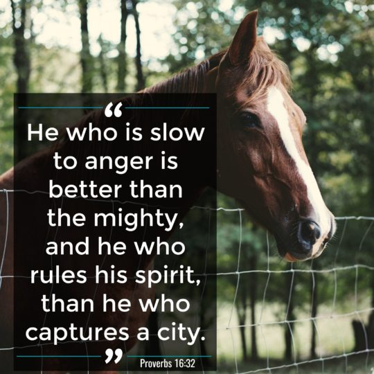 Proverbs 16:32