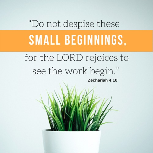 """Do not despise these small beginnings, for the LORD rejoices to see the work begin."""